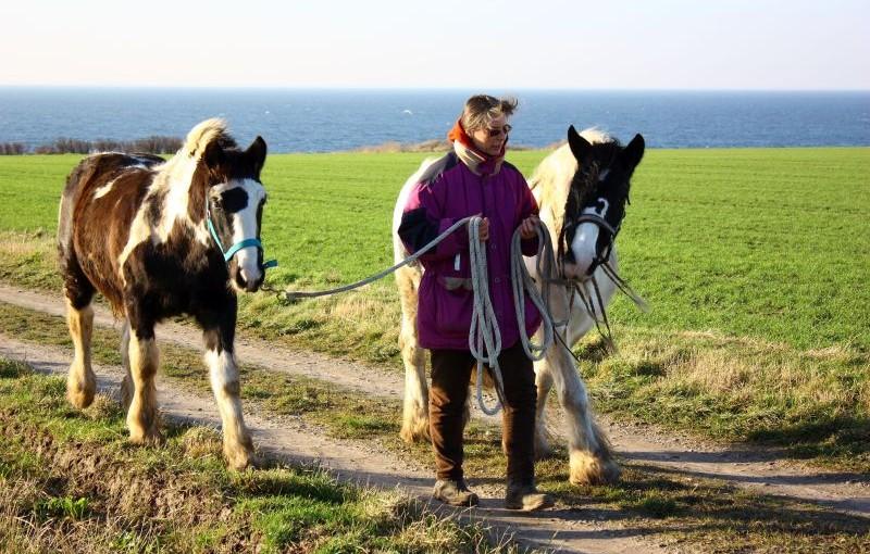 6 Wege, auf Spaziergängen mit Freude zu lernen
