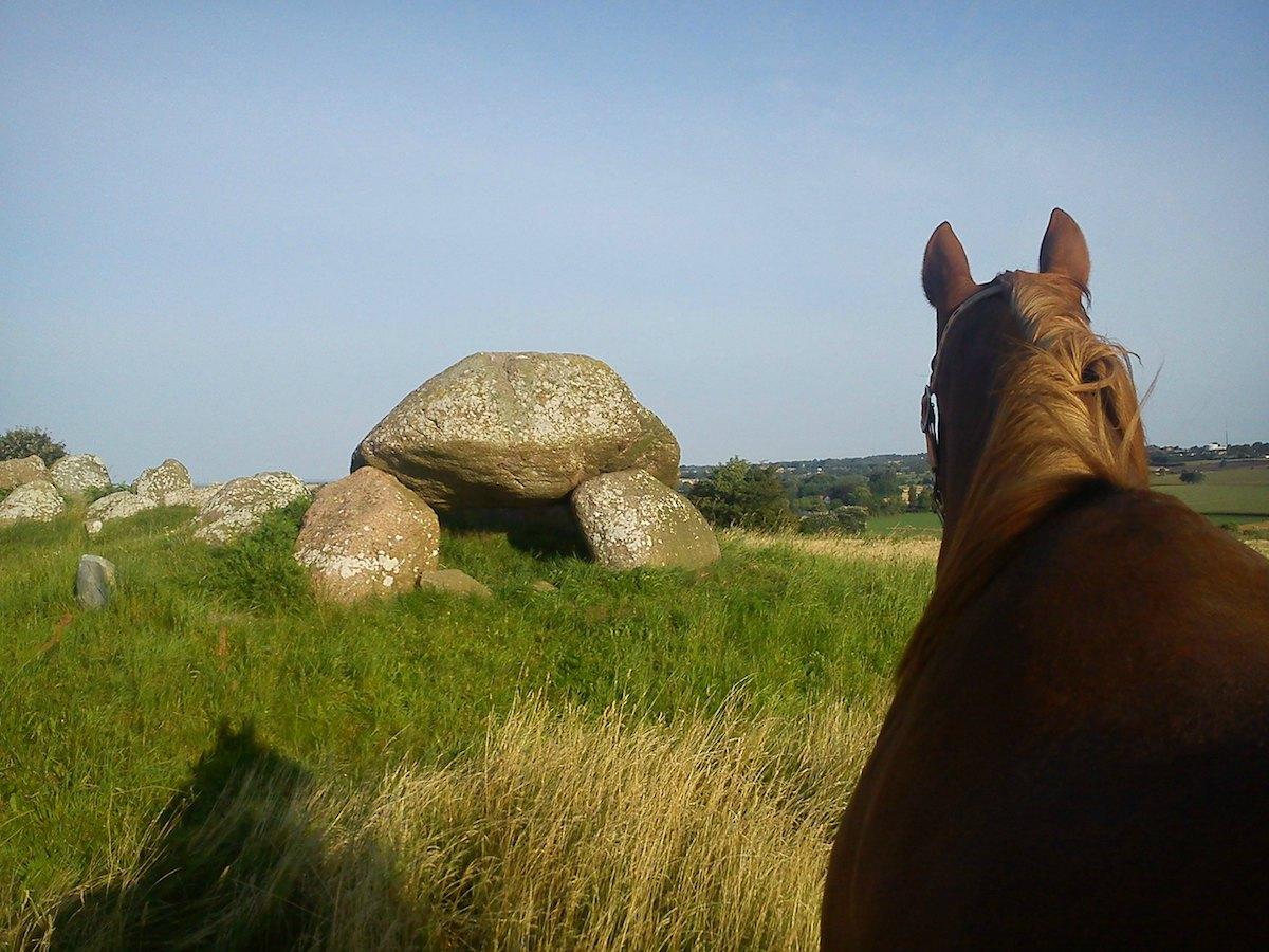 Wandern mit Pferden
