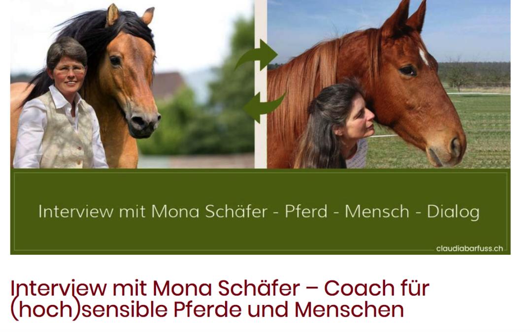 Interview mit Mona Schäfer – Coach für (hoch)sensible Pferde und Menschen