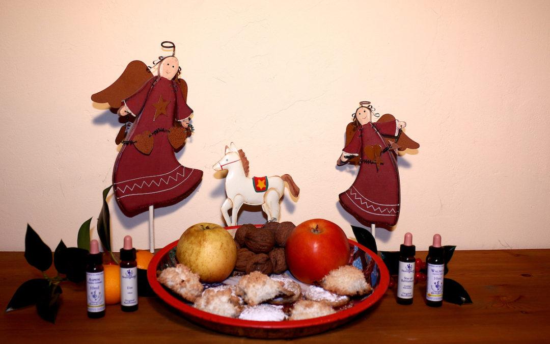 Bachblüten für entspannte Weihnachten für Mensch und Pferd